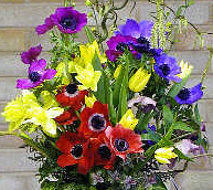Triadic Anemone Flower Arrangement