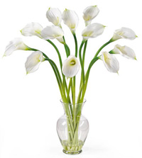 Silk Calla Lily Stems in Glass Vase
