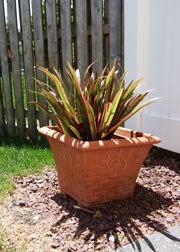 Faux foliage plant outdoors