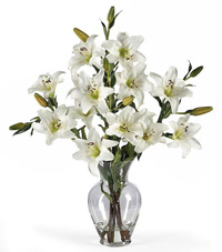 White Lily Stems in Artificial Water