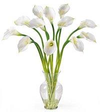 Silk Calla Lily Stems in Glass Vase